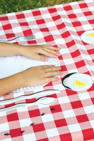toalha mesa piquenique