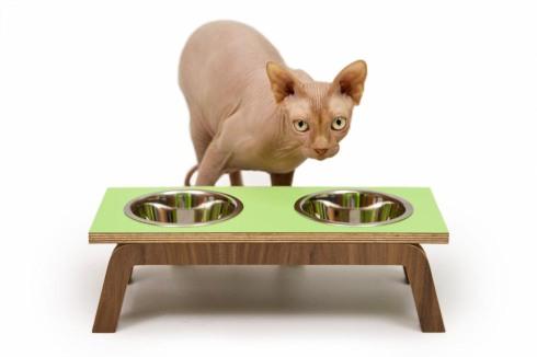 modernist cat2